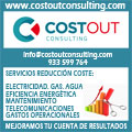 CostOut Consulting